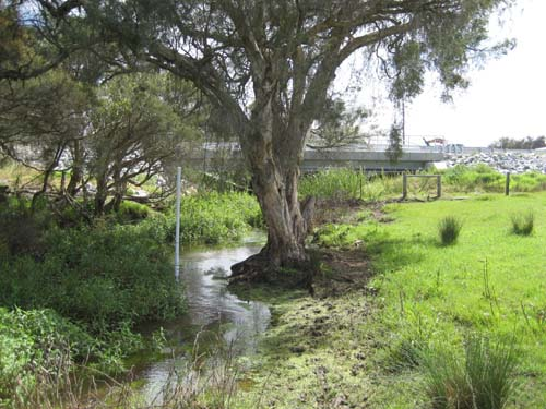 2002 Southern River Urban Water Management Strategy